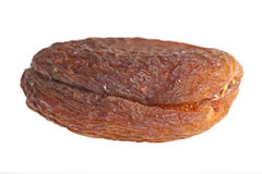 A dried apricot Royalty Free Stock Photography