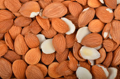Dried apricot kernel. Close up as background royalty free stock photos
