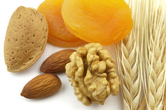 Free Dried Apricot With Nuts Stock Photo - 11142560