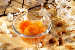 Dried apricots and almonds. With apricot flowers vector illustration
