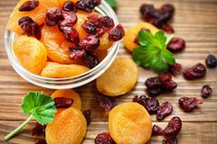 Dried apricots and cranberries Royalty Free Stock Photos