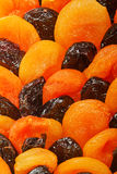Dried apricots and prunes Stock Image