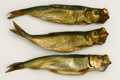 Dried aringa fish isolated on white Stock Images