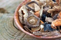 Dried Asia Mushrooms royalty free stock image