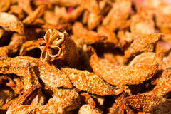 Dried Averrhoa bilimbi Royalty Free Stock Photo