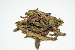 Dried Averrhoa bilimbi Stock Photos