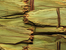 Dried bamboo leaf for wrapping chinese meat dumpli Royalty Free Stock Photography