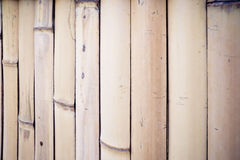 The dried bamboo wall. Walls made by dry bamboos Stock Images
