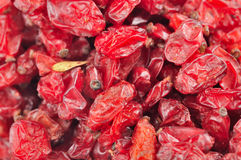 Dried Barberry Berries Royalty Free Stock Images