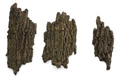 Dried bark on white. Dried bark isolated on white background stock photo