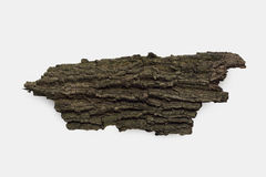 Dried bark on white. Dried bark isolated on white background royalty free stock photography