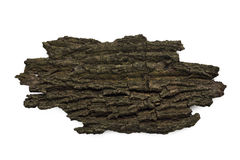 Dried bark on white. Dried bark isolated on white background royalty free stock image