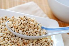Dried barley seeds as food ingredients Stock Images