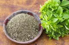 Dried basil in a bowl next to fresh basil Stock Images