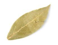 Dried bay leaf Stock Photo