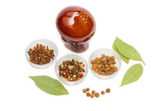 Dried bay leaf, clove, pepper and pepper shaker Stock Photography