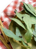 Dried bay leaves. In a coper scale tray royalty free stock photo