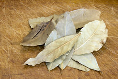 Dried bay leaves Royalty Free Stock Images