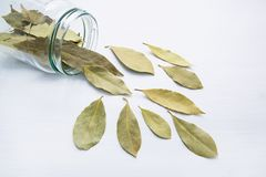 Dried bay leaves in glass jar on white. Wooden background Royalty Free Stock Photos