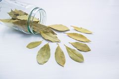 Dried bay leaves in glass jar on white. Wooden background Royalty Free Stock Photo