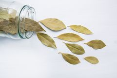 Dried bay leaves in glass jar on white wooden. Background Royalty Free Stock Images