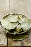 Dried bay leaves on a plate royalty free stock images