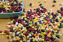 Dried Beans Stock Image
