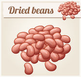 Dried beans. Detailed Vector Icon Stock Photography