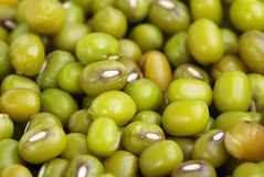 Dried beans mung Royalty Free Stock Photography