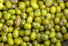 Dried beans mung Stock Photography