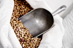 Dried beans with scoop Royalty Free Stock Photo