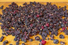 Dried berries of currants and dried blueberries on a wooden table. Ecologically clean food. Healthy dried berries of blueberries a. Nd currants royalty free stock image
