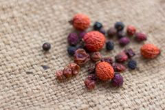 Free Dried Berries On Sacking Royalty Free Stock Photography - 110644267