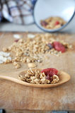 Dried berry and granola on spoon Royalty Free Stock Photos
