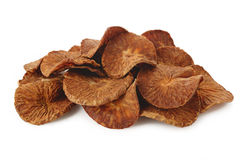 Dried Betel Nut. On white background Royalty Free Stock Images