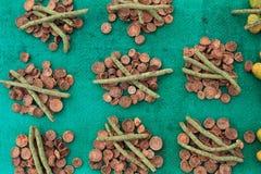 Dried betel Stock Image
