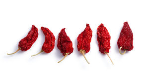 Dried Bhut Jolokia ghost chiles, paths, top view Stock Images