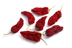 Dried Bhut Jolokia ghost chiles, paths, top view Royalty Free Stock Image