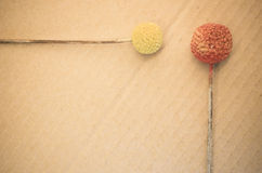 Dried billy buttons. On a paperboard background Royalty Free Stock Photos