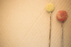 Dried billy buttons. On a paperboard background stock illustration