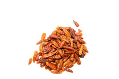 Dried bird eye chili Stock Images