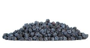 Dried black aronia berries Stock Photo