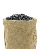 Dried black beans in sacks fodder Stock Photography