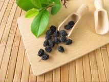 Dried black chokeberries Royalty Free Stock Photo