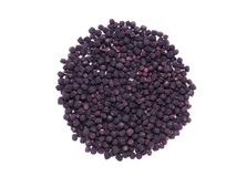 Dried black chokeberry fruits (Aronia melanocarpa) stock image