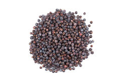 Dried black currant Royalty Free Stock Photo