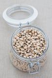 Dried black eye beans Stock Image