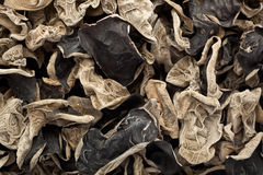 Dried black fungus Royalty Free Stock Images