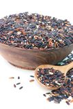 Dried black rice Stock Photography