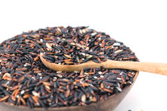 Dried black rice. In wooden blow was isolated on white background Royalty Free Stock Photography